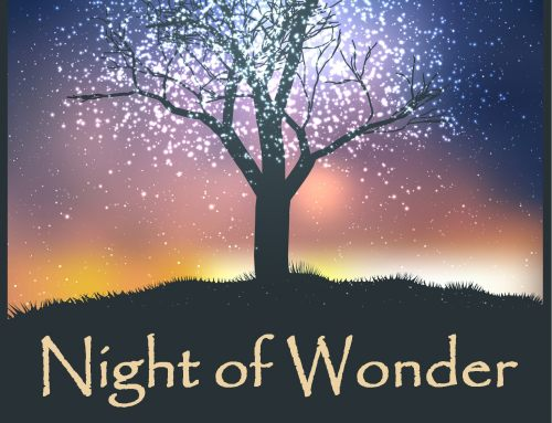 Press Release: 2018 Night of Wonder Gala & Auction